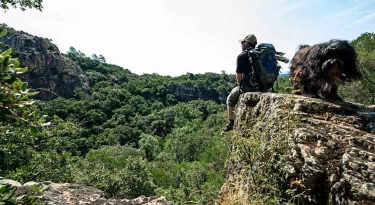 Gorges-du-Blavet-Mensch und Hund auf einem Felsvorsprung