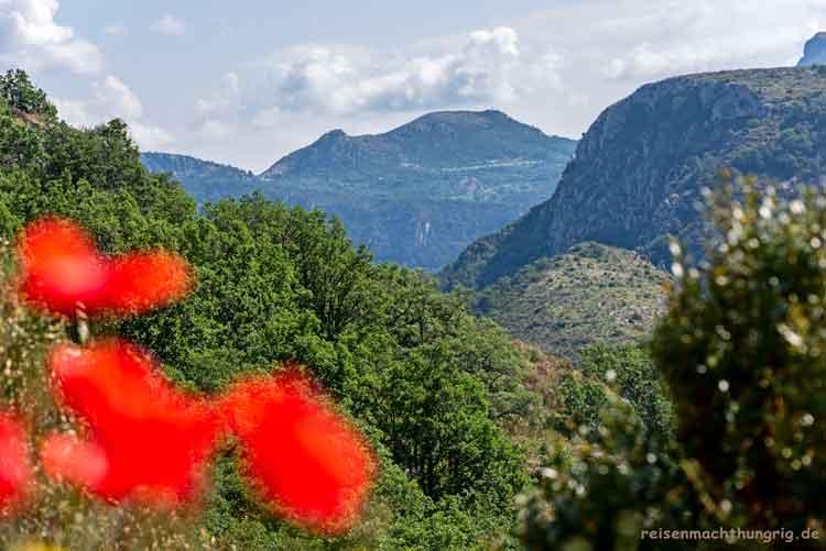 Landschaft mit rotem Mohn