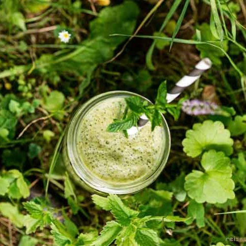 Wildkräuter-Gurken-Smoothie