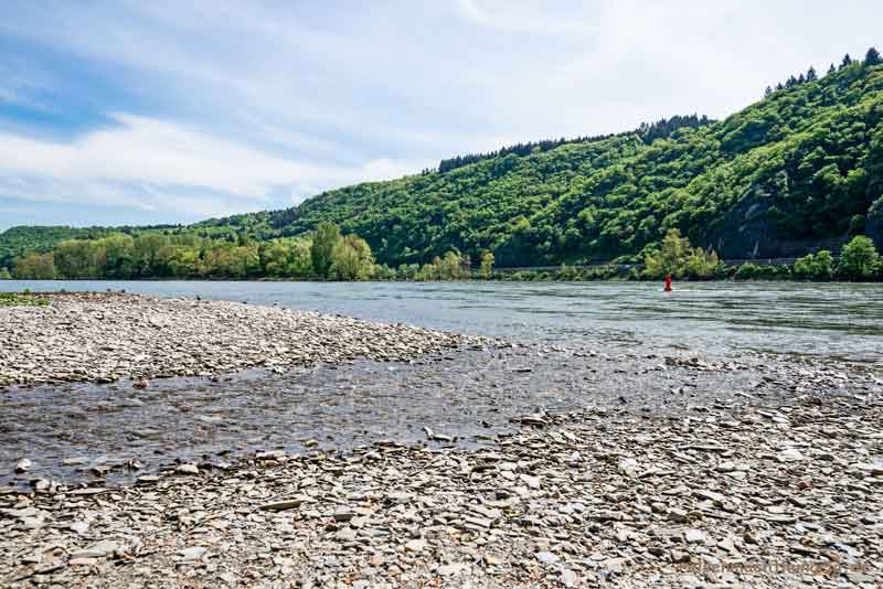 Hier mündet der Pulsbach in den Rhein