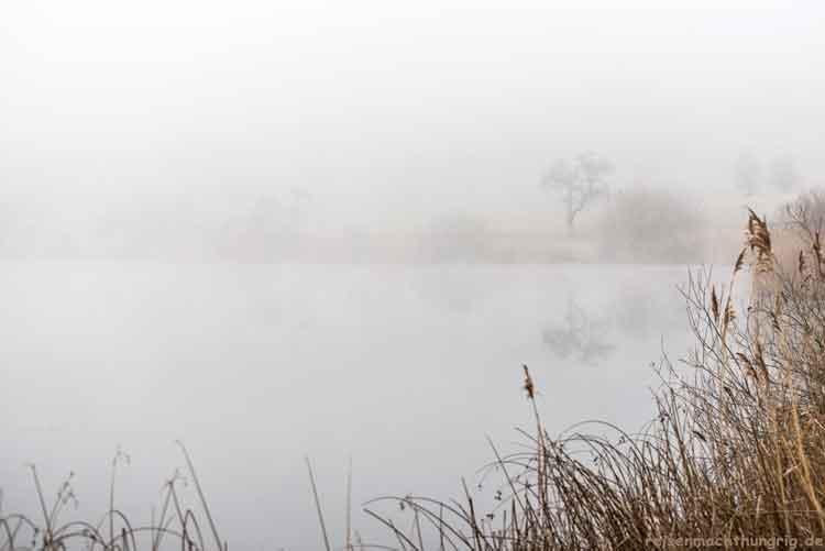 Schalkenmehrener Maar im Nebel