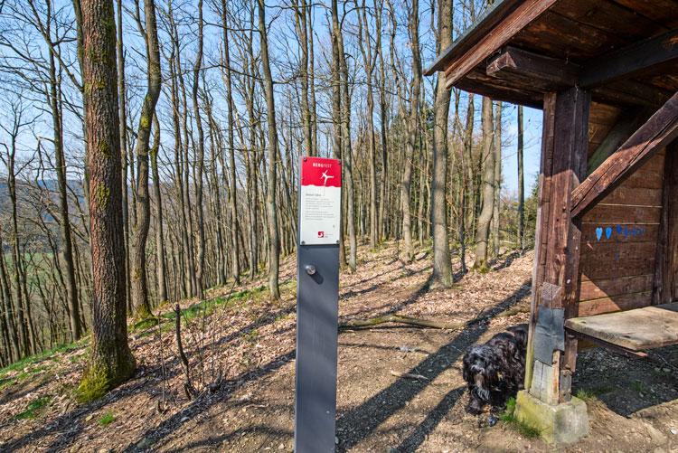 Schutzhütte auf dem Kolfenberg
