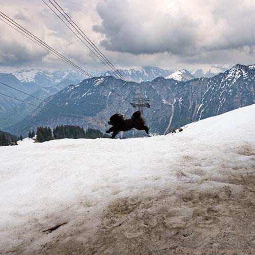 Auf dem Fellhorn bei Schnee