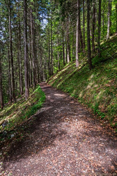 Wanderung durchs schöne Trettachtal