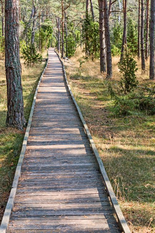 Trollskogen Naturschutzgebiet