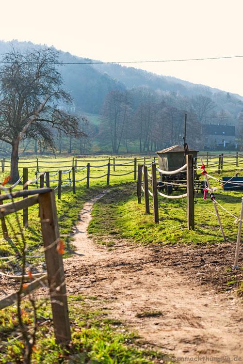 Wanderweg Syberg