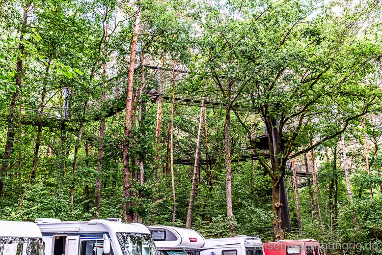 Wohnmobilstellplatz unter Baumwipfelpfad
