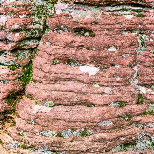 Dahner Felsenpfad - Wandern im Pfälzer Wald