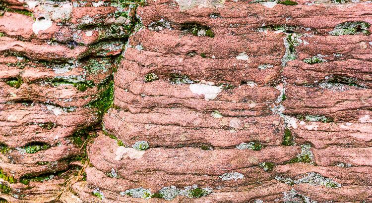 Felsenwand Detail