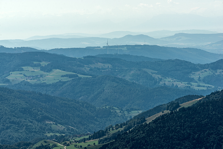 Schwarzwaldblick am Morgen