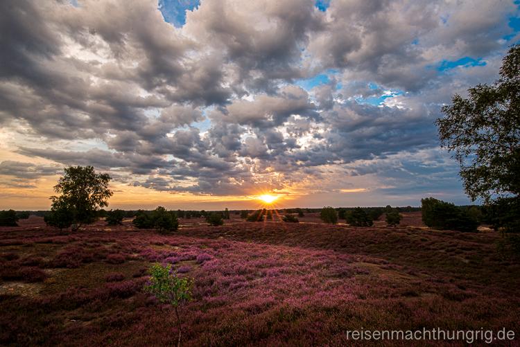 Landschaftsfotografie für Einsteiger Sonnenaufgang über der Nemitzer Heide