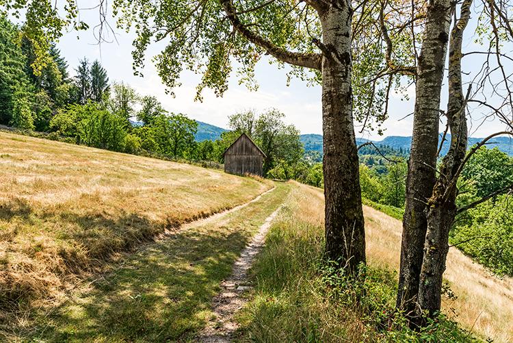 Unterwegs auf dem Panoramaweg Baden-Baden