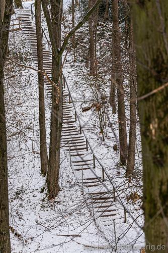 Lange Stiege durch den Wald
